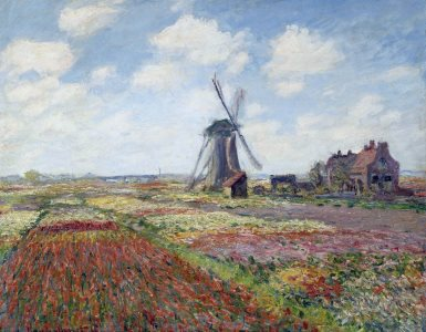 Monet: Fields of Tulip with Rijnsburg Windmill, 1886